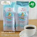 コナコーヒー100%コナコーヒー豆ハワイアンパラダイスコーヒー2袋セット7oz(198g)HAWAIIANPARADICECOFFEEハワイコーヒーハワイコナコーヒーコーヒー豆高級極上ハワイコナ珈琲coffee