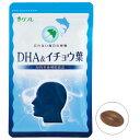 【送料無料】DHA&イチョウ葉