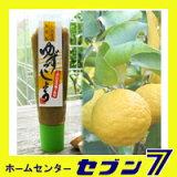 ゆずの香りにピリッと辛味が絶品。柚子胡椒 ゆずごしょう (青) チューブ入  30g *くしの農園* (メール便発送/)