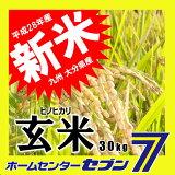 ひのひかり 玄米 30kg 送料無料 28年産 [九州 大分県産 ヒノヒカリ 30kg 米 お米 うるち米]【RCP】
