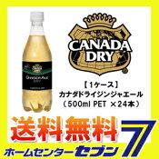 【カナダドライ】 ジンジャエール 500ml 24本 PET コカ・コーラ 【1ケース販売】【送料無料】[コカコーラ ドリンク 飲料・ソフトドリンク]