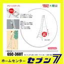 Hasegawa-gsc360t