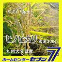 Hinohikari-genmai_h2