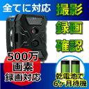 防犯カメラ 電池式 SDカード録画 500万画素 ワイヤレス ケーブルレスカメラ【CK-S680】 屋外対応 トレイルカメラ