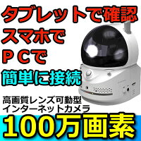 防犯カメラ簡単インターネットカメラHOME-EYE(ホームアイ)MTC-HE02IP【Camview対応】