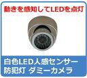 ダミー防犯カメラ・監視カメラ 白色LED付き 屋外 ダミーカメラ ダミーカメラ DC-007SL