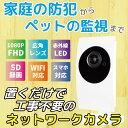 家庭用 防犯カメラ SDカード録画 監視カメラ 簡単インターネットカメラ HOME-EYE(ホームアイ) MTC-HE04IP【Camview対応】