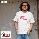 【メール便可】CHUMS チャムス tシャツ Logo T-SHIRT CH01-1324 メンズ レディース 半袖 ロゴ Tシャツ 半袖Tシャツ クルーネック 白 黒 ボーダー ブランドロゴ プリント インポート アウトドア アメカジ ブランド おしゃれ ホワイト ブラック