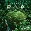 【試聴できます】屋久島ヒーリング CD 音楽 癒し ヒーリングミュージック 不眠 ヒーリング