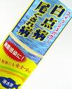 白点病や尾ぐされ病の予防・改善 水質改善 無害 フィッシュパワー(海水用)100ml