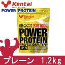 kentai パワープロテイン プロフェッショナルタイプ 1.2kg - 健康体力研究所