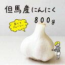 ふっくらおいしい兵庫県産にんにくSサイズ800g