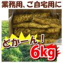 【期間限定クーポン】【送料無料】訳あり 島田ファーム産 やまといも 6kg 業務用