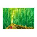 【直送品】【代引き不可】ジグソーパズル 300ピース 風景 嵯峨野の竹林 33-150ご注文後3〜4営業日後の出荷となります