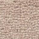 サンゲツカーペット サンビクトリア 色番VT-6 サイズ 200cm×240cm 【防ダニ】 【日本製】