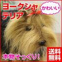 犬 ぬいぐるみ ヨークシャテリア [いぬ イヌ リアル 本物 そっくり かわいい] 送料無料