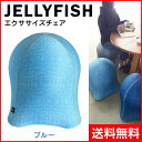 【SPICE/スパイス】 ジェリーフィッシュ エクササイズチェア ブルー WKC103BL