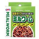 なまタイプだからよく食べる! ミルワーム/缶詰 ハリネズミ モモンガ リス サル 爬虫類 トカゲ