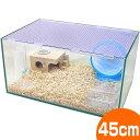 【ハムスター 水槽】450ドワーフハムスター用飼育セット/ハムスター 飼育セット