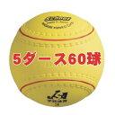 ナガセケンコー 学校体育ソフトボール検定3号(5ダース)送料込価格 KS12-PUR-5D