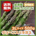 【送料無料】会津産グリーンアスパラガス3Lサイズ 500g