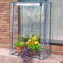 【ポイント10倍 11月末日まで】ビニール温室 ロング大きな植物用HS008[g3]