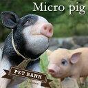 magnet ペットバンク Micro pig ブタ 全2種