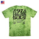 Lightning Bolt ライトニング ボルト Men's Cheers TD S/SL T-shirt メンズ チアーズ タイダイ Tシャツ アメリカ製