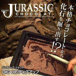 恐竜の化石を発掘 ジュラシックチョコ ディグアップ