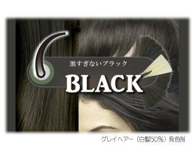 [頭皮ケア]かの子のハーバルヘナ31番【ブラック】白髪染め■3袋セット(100g×3袋)