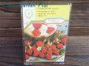 【1袋から購入可】【ゆうメール便対応】ハーブ 種 ワイルド ストロベリー