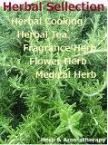 「2目的選んでハーブ苗おまかせ24種セット」ハーブガーデンをつくろう♪ Herb Garden