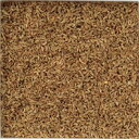 [email service free shipping] 100 g of anise bulk herb seed spice (kind)