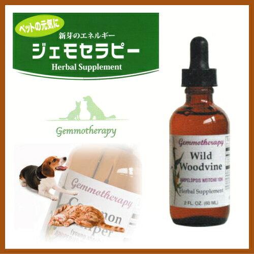 ジェモセラピー <猫用 犬用 液体サプリメント>ワイルドウッドヴァイン (スイカズラ) (靭帯・骨・関節用) 60ml ウッドバイン ペット用 正規品 BOIRON社製サプリメント新芽の成長ホルモン送料無料