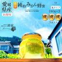 【訳あり】【送料無料】国産 みかんはちみつ 240g×3本セット 蜂蜜 生はちみつ はちみつ ハチミツ みかん蜂蜜 みかんハチミツ 純粋