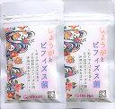 送料無料 1000円 ポッキリ 国産 お試し2週間(14分粒入り)×2パック ショウガサプリ ビフィズス菌サプリ やんばるショウガ使用 DHA EPA