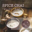 スパイスチャイティー/ジンジャー|ティーバッグ3g×15個入|インド産スパイス しょうが紅茶 送料無料