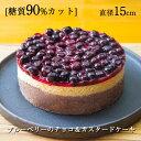 糖質制限★ブルーベリーのチョコムースケーキ★直径15cm