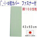 枕カバー 43×63cm 綿100% 日本製・国産 おしゃれ無地・ライトグリーン  まくらカバー シーツ マクラカバー-790