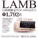 NZ産熟成スプリングラムラック(ラム骨付きロース ラム肉 リブロース)(最も栄養価が