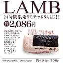 ニュージーランド産WAKANUIスプリングラムフレンチラムラック(ラム骨付きロース 仔羊