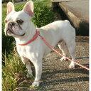 小型犬 中型犬の首輪とリードセット ピンク 1.5cm幅