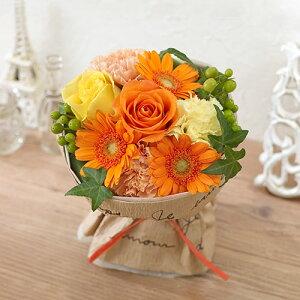 日比谷花壇 フレッシュ オレンジ