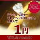 サンキャッチャー球 クリスタルボール レインボーメーカー サンキャッチャー1000円以上で1円! 20mm 30mm 40mm 用途いろいろ 卸