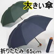 【送料無料】大きいミニ傘 65cm×8本骨 【LIEBEN-0222】 メンズ/男性用/雨傘/折り畳み傘
