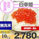 【日本全国送料無料】商品到着後レビュー記入で次回使える200円クーポンGET!