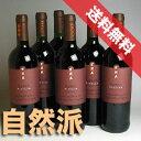 【送料無料】 アウローラ  エラ シラー  6本セット Aurora Era Syrah イタリアワイン/赤ワイン/ミディアムボディ/750ml×6【自然派ワイン ビオワイン オーガニックワイン 有機栽培ワイン】【イタリアワインセット】【赤ワインセット】
