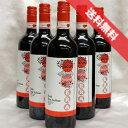 【送料無料】 アウローラ  エラ シラー  6本セット Aurora Era Syrah イタリアワイン/赤ワイン/ミディアムボディ/750ml×6【自然派..