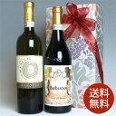 ギフト箱入りイタリアワイン2本セット! ギフト・ラッピング・のし・ カードにも対応!