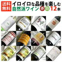 ■送料無料■自然派赤白ワイン イロイロな品種を楽しむ飲み比べ12本セットVer.3 ビオロジックワインもたくさん入っ…